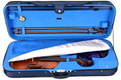 a case for two violins Sonans